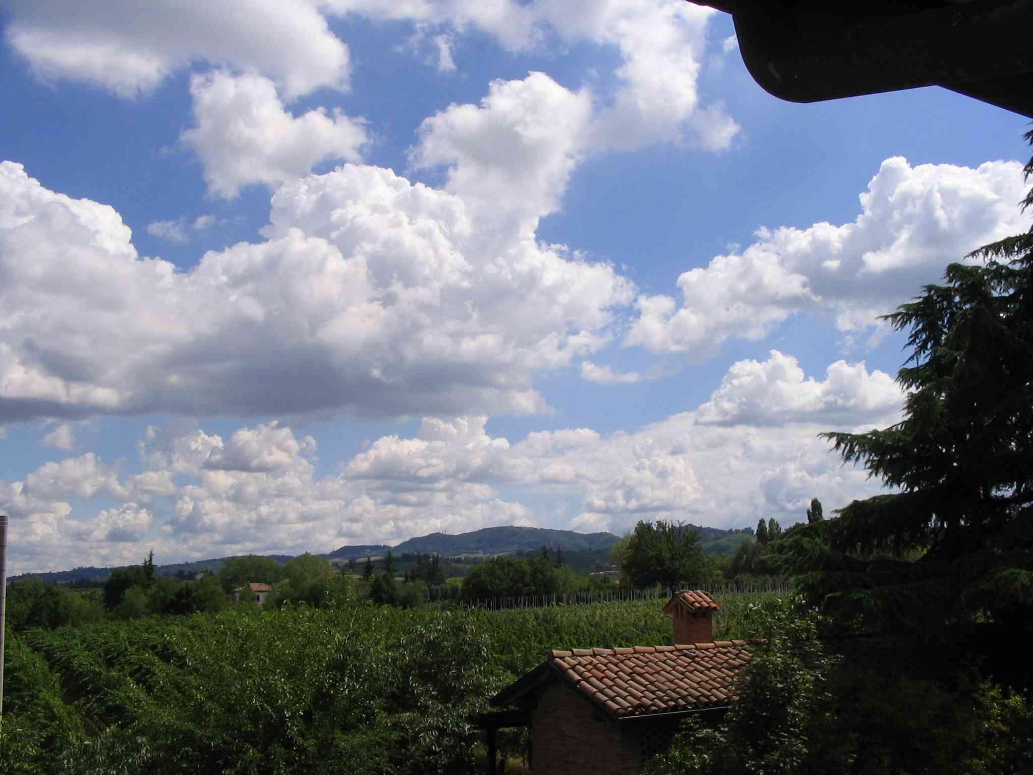 Cielo e campagna sulla Roverella